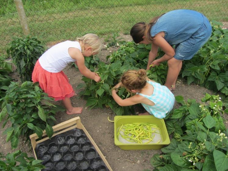 les enfants dans le potager de la Demeure 051